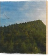 A Forested Dune... Wood Print
