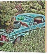 A Forgotten Mustang Wood Print