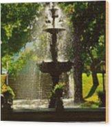 A Fountain In A St. Paul Park Wood Print