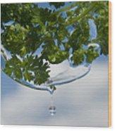 A Fresh Mint Drop Wood Print