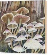 A Fungus Amongus Wood Print