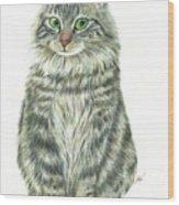 A Furry Cat  Wood Print