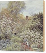 A Garden In Spring Wood Print