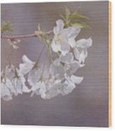 A Gentle Touch Of Spring Wood Print