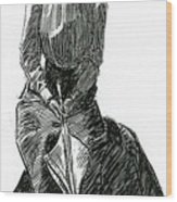 A Gibson Girl With Parasol Wood Print
