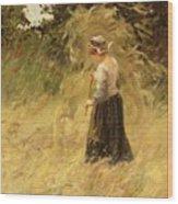 A Girl Harvesting Hay Wood Print