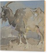 A Goat By Joseph Crawhall 1861-1913 Wood Print