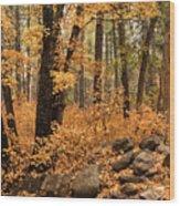 A Golden Autumn Forest  Wood Print