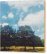 A Good Book At The Park Wood Print