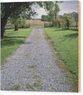A Gravel Road Marks The Entranceexit Wood Print