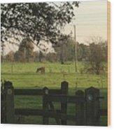 A Graveyards View. Wood Print