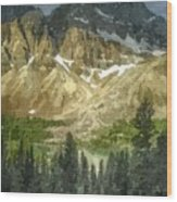 A Gray Sky Over The Canadian Rockies Wood Print
