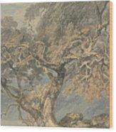 A Great Tree Wood Print