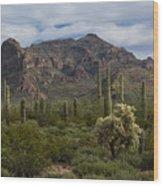 A Green Desert Forest  Wood Print