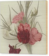 A Group Of Clove Carnations Wood Print