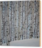 A Grove Of Aspens Wood Print