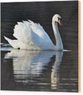 A Happy Swan Wood Print