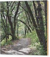 A Happy Trail Wood Print