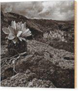 A Hard Existence - Sepia Wood Print