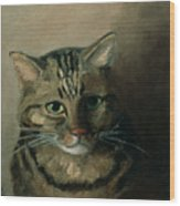 A Head Study Of A Tabby Cat Wood Print