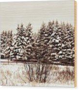 A Herd Of Trees Wood Print