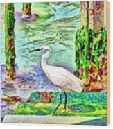 a heron is walking on a stair about the Grand Canal Wood Print