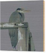 A Heron On Watch  Wood Print