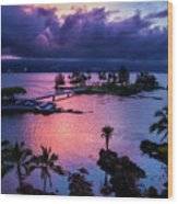 A Hilo View Wood Print