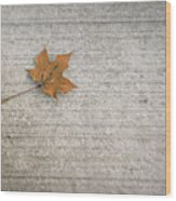 A Hint Of Autumn Wood Print