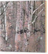 A Hint Of Pink Wood Print