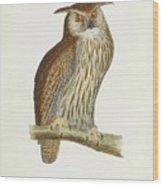 A History Of British Birds. Wood Print