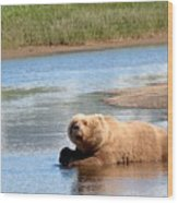 A Hot Day In The Hallo Bay Katmai National Park Preserve Wood Print