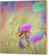A Hoverfly On Abstract #h3 Wood Print