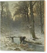 A January Evening In The Woods Wood Print