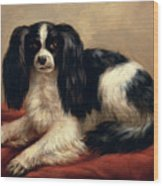 A King Charles Spaniel Seated On A Red Cushion Wood Print