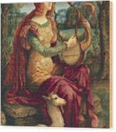 A Lady With A Unicorn Wood Print