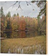 A Lake In England  Wood Print
