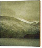 A Lake In Patagonia Wood Print