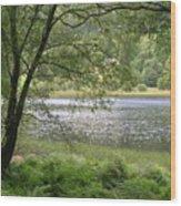 A Lake Near Glendalough Wood Print