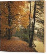 A Leafy Path Wood Print