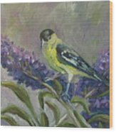 A Lesser Goldfinch Wood Print