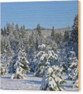 A Light Snow Dusting Wood Print