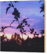 A Lighter Side Of A Sunset Wood Print