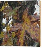 A Lil Bit Of Fall Wood Print