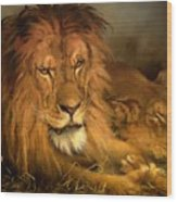 A Lion And A Lioness Wood Print