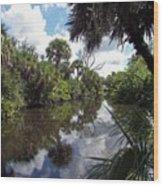 a little bit of Florida Wood Print