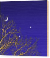 A Little Night Magic Wood Print by Wendy J St Christopher