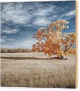 A Lone Tree Wood Print