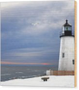 A Lonely Seagull Was Flying Over The Pemaquid Point Lighthouse Wood Print