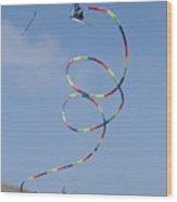 A Long-tailed Kite Soars Wood Print